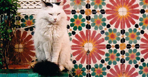 Marrakech Bohemian Home Inspiration.