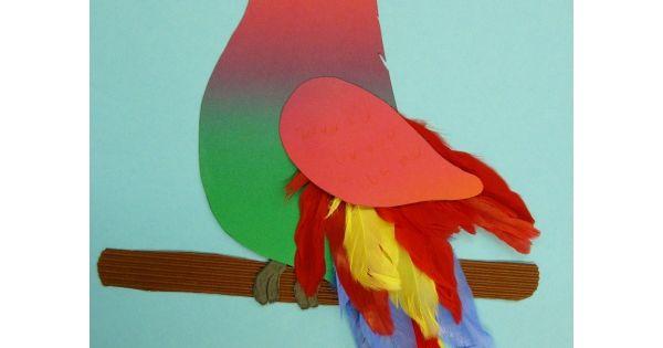 Papagei basteln brico pinterest papageien basteln for Raumgestaltung vogel