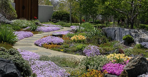 Water Wise Garden Composition By Marpa Landscape Design