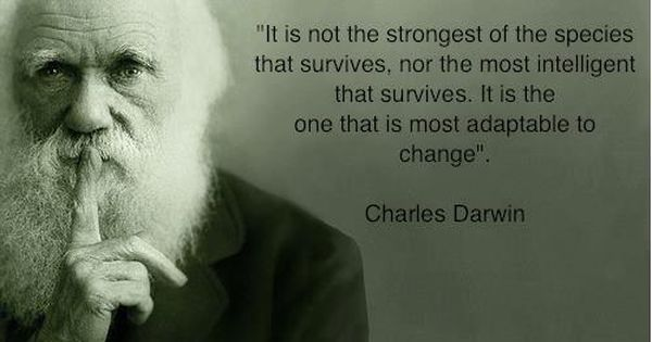 Adapt to change. So much truth