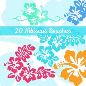20 Hibiscus Flowers Ps Brushes Free Photoshop Photoshop Brushes Free Photoshop Brushes