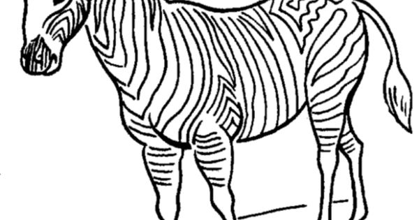 Zoo animal coloring page zebra with stripes zebra for Coloring pages of zebra stripes