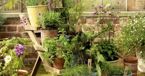 Herb Garden Display Stand (via housetohome)