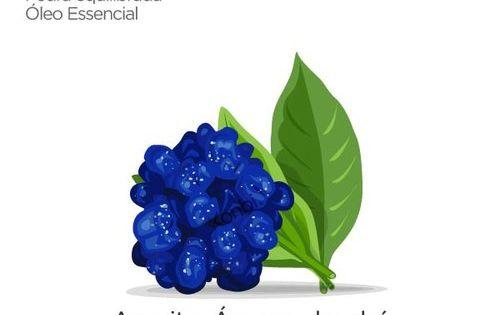 Os 5 Elementos Da Natureza Cristais Aromaterapia E Feng Shui
