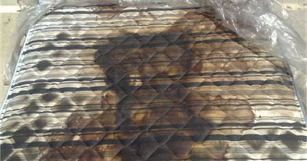 Human decomposition stain left on a mattress. You can ...