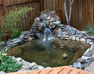 Best Ponds From Readers 39 Yards Rock Shorts And Backyard