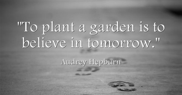 To Plant A Garden Is To Believe In Tomorrow Bee Loved Quotes Pinterest Plants And Gardens