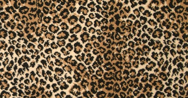 Leopard Cut Animal Collection Stark Carpet Wild