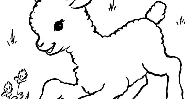 google coloring pages animals - photo#15