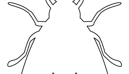 Fly pattern Use the printable outline for crafts
