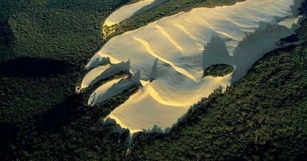 Sand Dunes in Heart of the Forest - Frasier Island, Australia travel