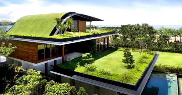 12 Homes With Living Roofs In 2020 Green Roof Roof Cost Living Roofs