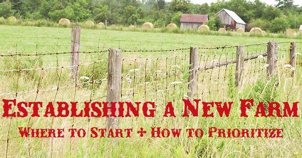 Establishing priorities when planning a new farm