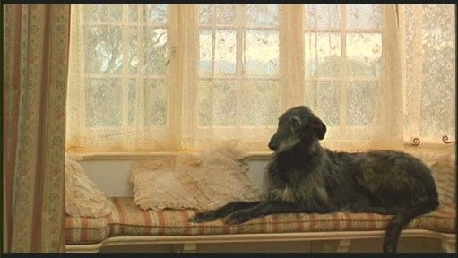 Karen Blixen S House In Out Of Africa Out Of Africa In Out