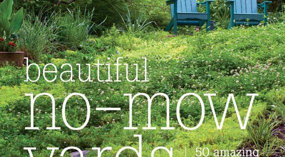 no mow yard ideas | Gardening at Repinned.net on No Mow Backyard Ideas id=50740