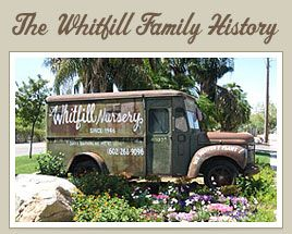 Whitfill Nursery Truck This
