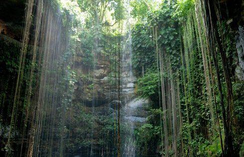 swimming hole, riviera maya mexico .