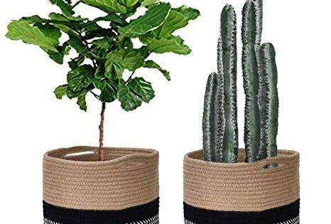 Amazon Com Jute Rope Plant Basket 11 Modern Woven Basket For 10 Plants Pot Floor Indoor Planter Cute Samll Storage O In 2020 Plant Basket Indoor Planters Plants