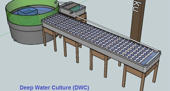 Pros and cons of different aquaponic designs media bed for Fish farming pros and cons