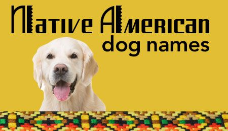Native American Dog Names With Images Dog Names American Dog Native American Dog