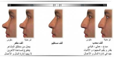 يمكن قياس هذه السمة بالنظر الى الأنف من الجانب و ملاحظة شكل قصبة الأنف و مدى إرتفاع قصبة الأنف عن الوجه القطاع Philosophy Books Body Language Face Reading