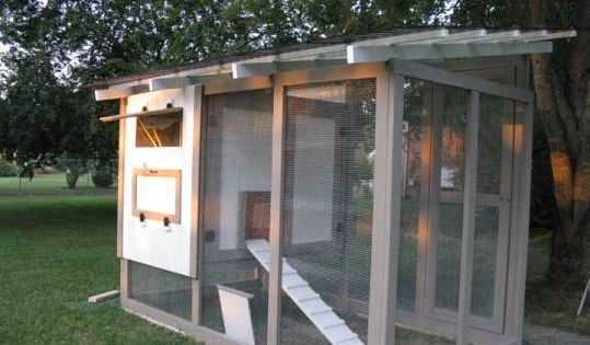 34 free chicken coop plans ideas that you can build on for Small backyard chicken coop plans free