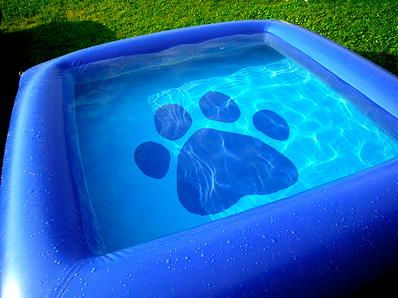 The Ultimate Dog Pool Made Of Rugged Puncture Resistant Whitewater Raft Material The Ultimate Dog Pool Offers A Fun Way For Yo Dog Pool Doggy Dog Accessories