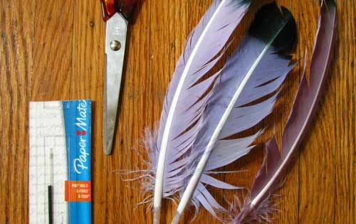 DIY pen quills! Great & Easy How To