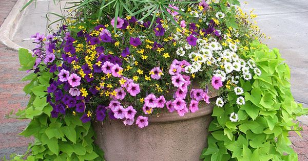 Garden Planter | Dowagiac, Michigan