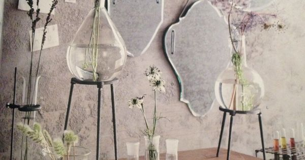 Beakers On Stands Make For Fun Vases Home Labware And
