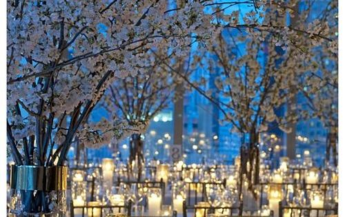 White Cherry Blossoms and Candlelight Blue Wedding Reception ... Wedding ideas for