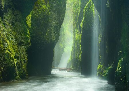 """RAINFOREST CANYON"" Oneonta Gorge, Oregon. This is a beautiful place!!!!"