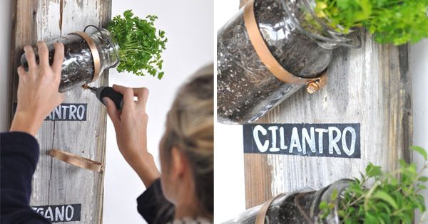 gardening indoors - Google Search- Herb garden idea