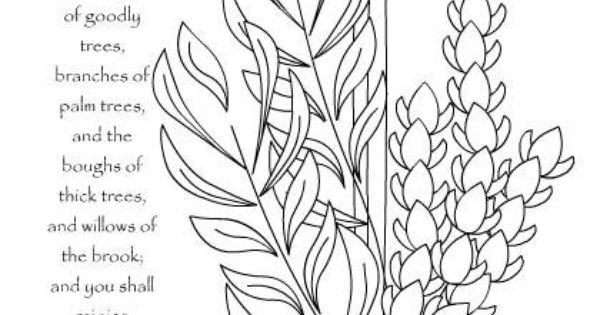 7 fruits for tu bshvat coloring pages | http://www.akidsheart.com/holidays/days/lulavcolor.htm ...