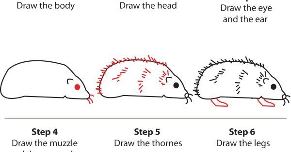 how to draw a cute hedgehog step by step