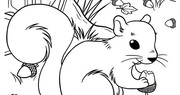 Coloriage dessin automne petit ecureuil qui grignote coloriages dessins d 39 automne - Coloriage petit ecureuil ...