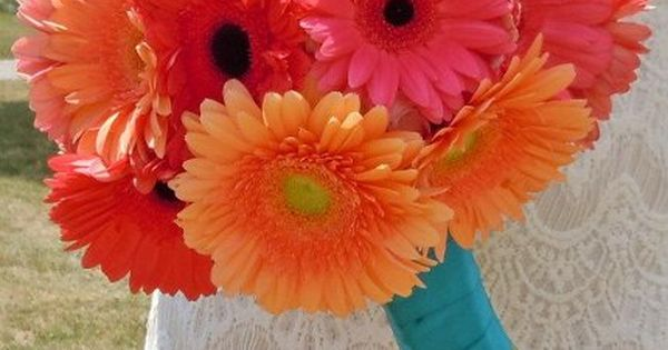 Coral, pink, orange, and tangerine gerbera daisy, hand-tied bouquet wrapped with medium