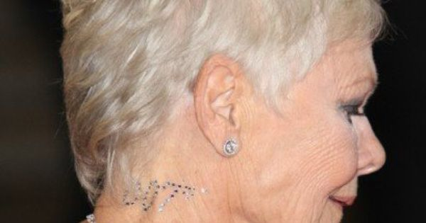 grey hair styles pictures judi dench gray hair is coarse and often dull so if you 7471