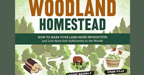 The Woodland Homestead: How To Make Your Land More Productive And Live More Self-Sufficiently In The. Skype extended Cheats Senko Precio Cortos great