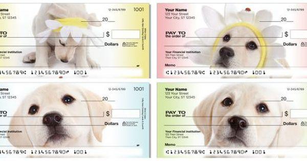 Labrador Retriever Checks With Images Lab Puppies Labrador