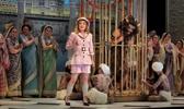 The Santa Fe Opera (summer)