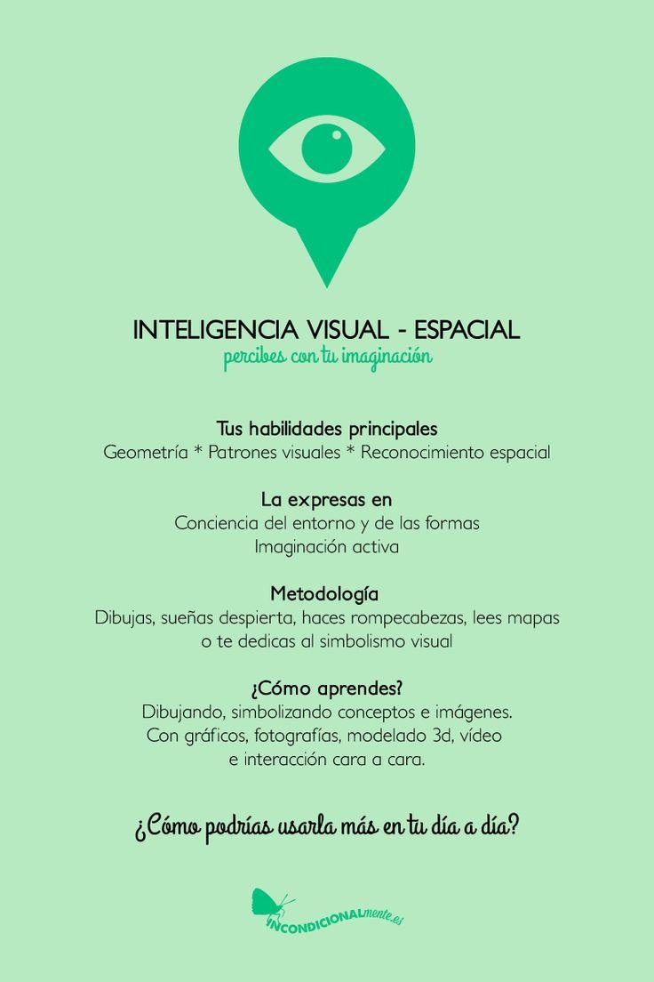 inteligencia visual-espacial #inteligencia #visual #espacial #imaginacion…
