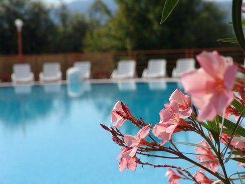Relax in outdoor pool, Hotel Kaskady #luxury #holiday #hotel #kaskady #freetime #wellness #relax #pool #spa #water #summer #flower