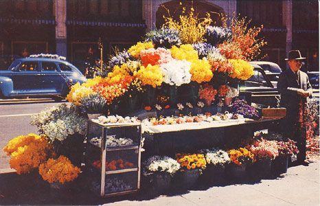 San Francisco Flower Stand. #sanfrancisco