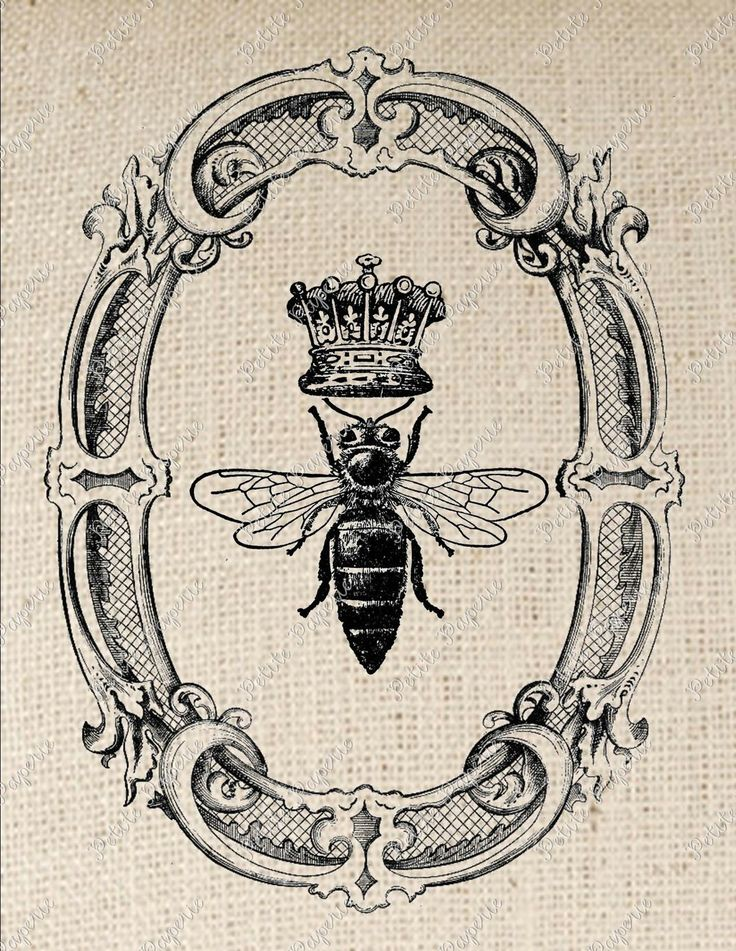 Honey Bees Art | Queen Bee in Oval Frame Digital Download or Iron on Transfer December ...