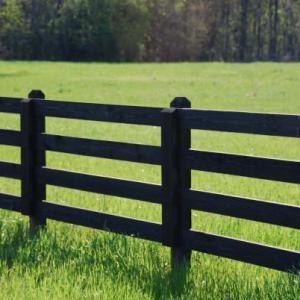 .black pasture fence.