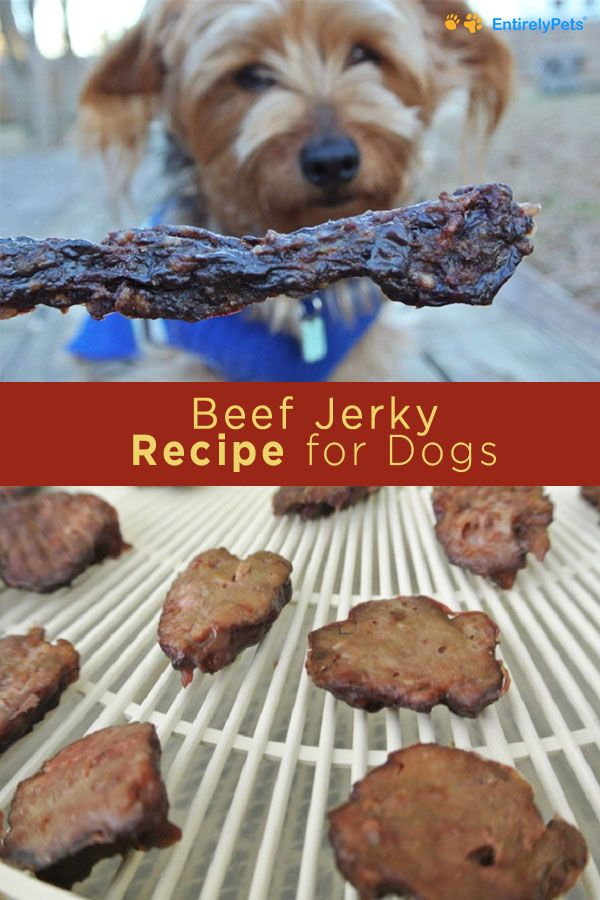 Dogs Recipe Dog Food Recipes Jerky Recipes Healthy Beef Jerky Recipe
