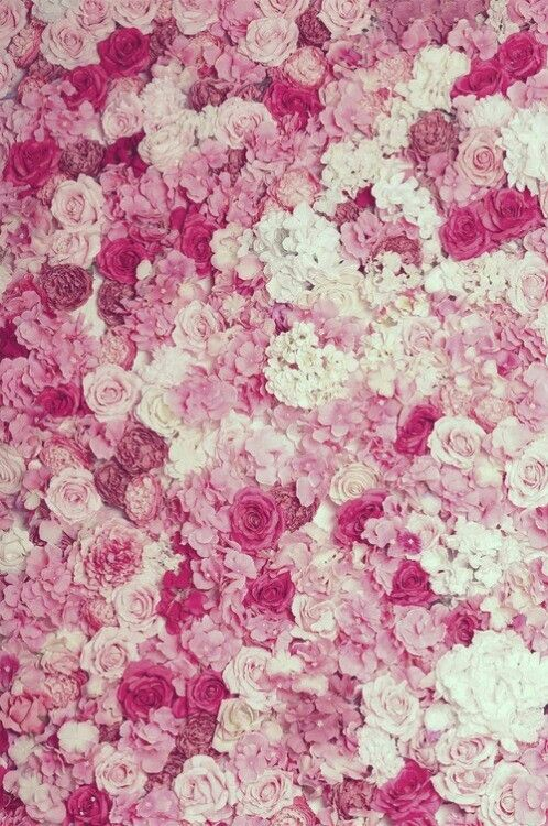 Light pink floral background tumblr 9 check all mightylinksfo 423 best pink is my happy color images on pinterest mightylinksfo