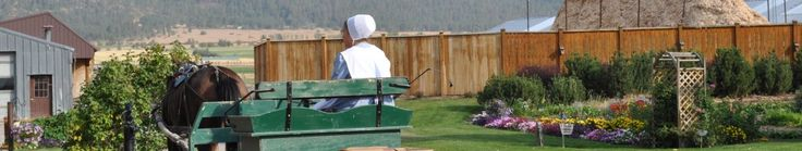 Amish Recipes ~ Hot Dog Sauce