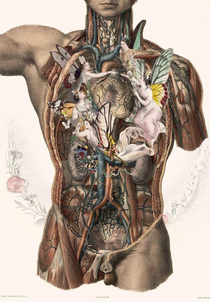 Pin-Ups, Anatomie et Art Nouveau – Les illustrations et collages de FFO (image) Plus
